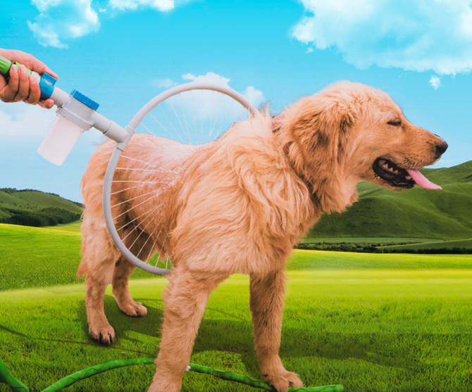 Hundtvätt i 360 grader - Geekblogg.se